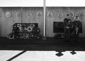 anzac-2017-1-of-305-195