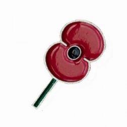 Poppy Pin Small