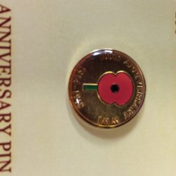 100th Anniversary Poppy Pin