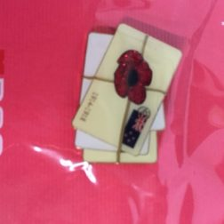 Letters from Home – RNZRSA Pin