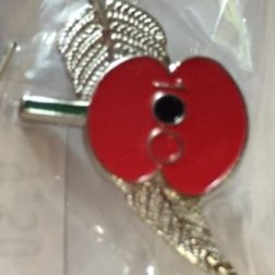 100 Poppy and Fern Pin